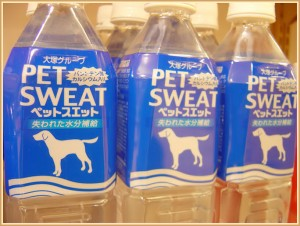 pet-sweat-300x226
